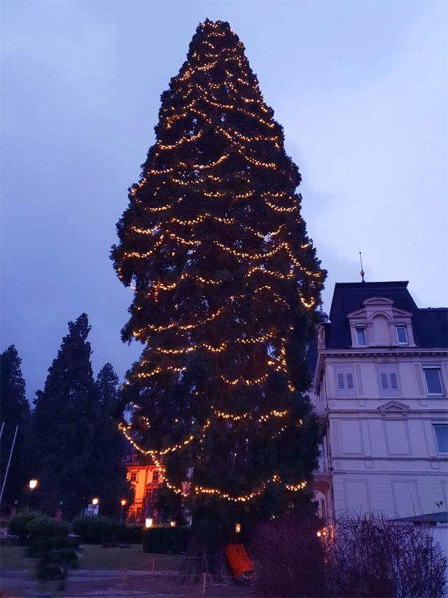 Weihnachtsbeleuchtung Anbringen.Weihnachtsbeleuchtung Sicher Anbringen Markart Mvd